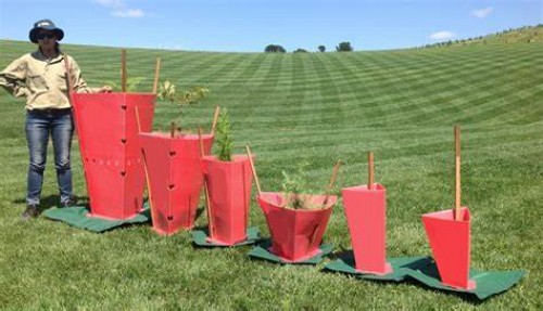 Fluted tree guards